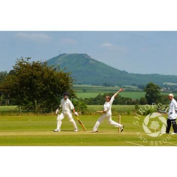 Cricket Wrekin