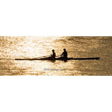Shrewsbury rowing