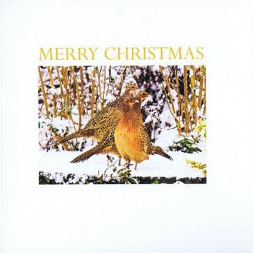 Pheasants Shropshire