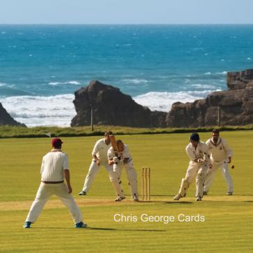 Cricket on cliffs